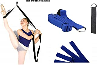 SHIHAN POWER SPORTS Blue TAO Leg Pulley Stretcher Doorway Mount