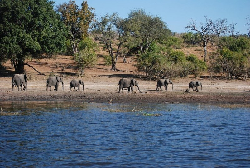 From Game Drives To Mountain Climbing, These Are The 5 Most Adventurous Things To See and Do In Kenya