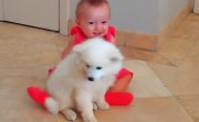 babies and puppies