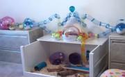 Hamster Room
