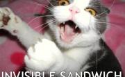 Invisible Sandwich