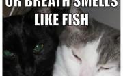 Ur Breath smells like fish. I like it.