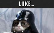 LUKE... I DON'T CARE